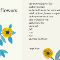 Currently Consuming: the sun and her flowers by Rupi Kaur
